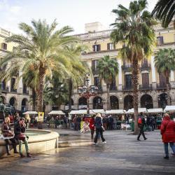 Schoolreis naar Barcelona - Cultuur - Architectuur